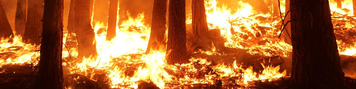 Wildfires around college campuses