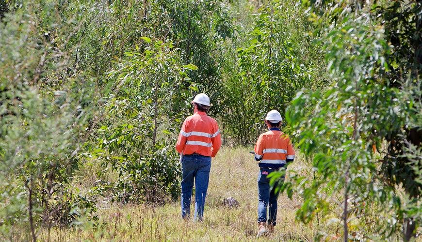 Glencore Westside Mine Void Rehabilitation